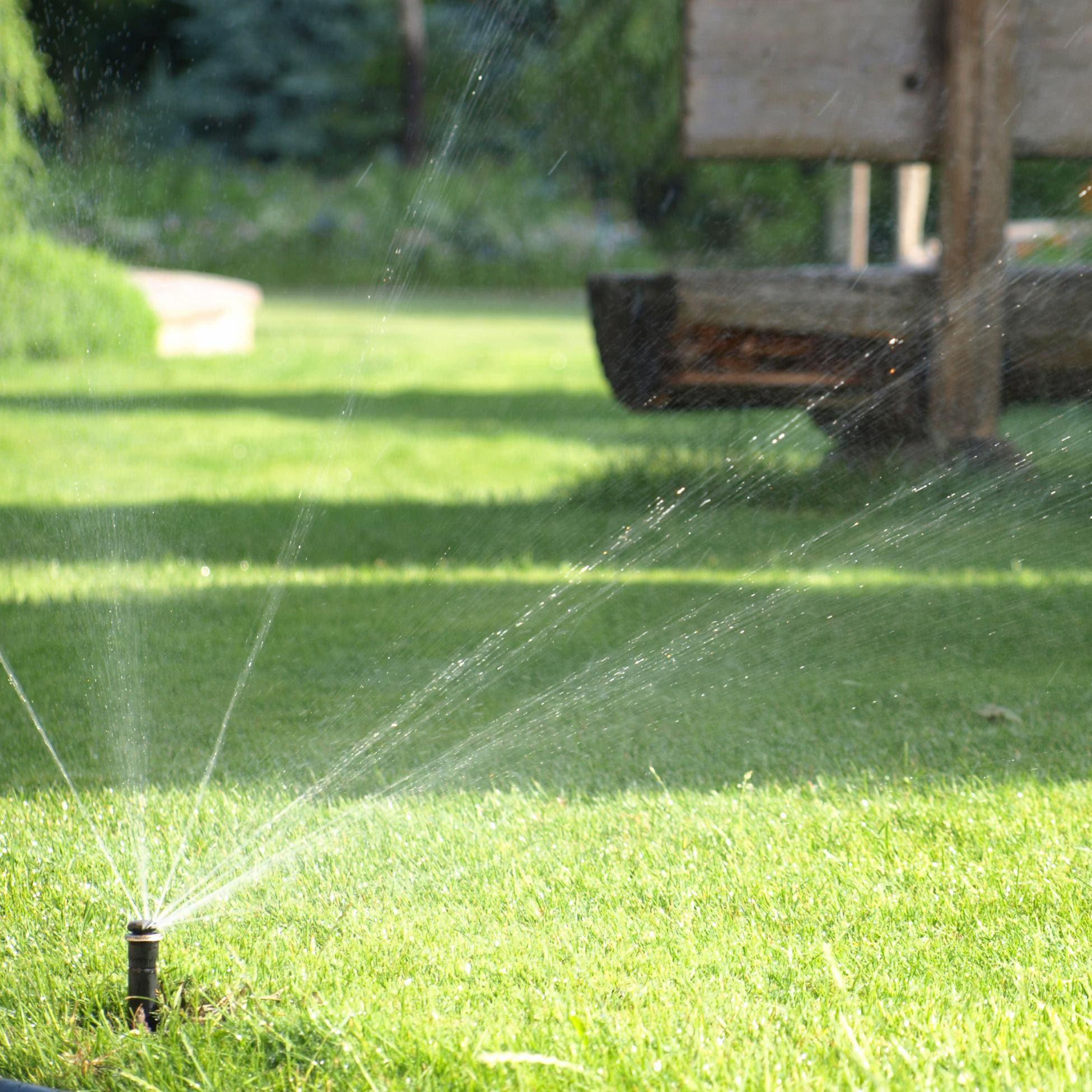 Bildmaterial: Bewässerung mit unserem «Heinzelmännchen»!